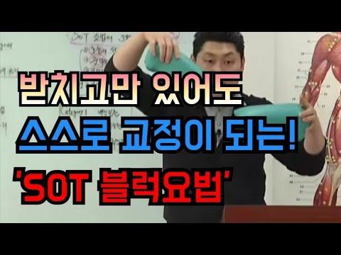 〔카이로프랙틱〕 中 SOT 후두천골요법 - 척추교정과 골반교정의 신기원
