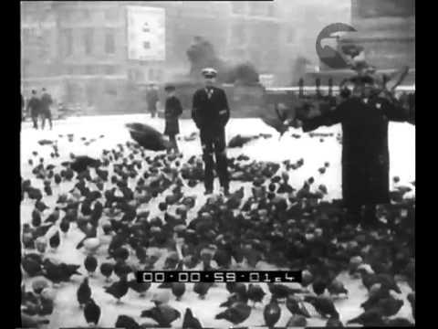 Alla scoperta degli Omega 3 from YouTube · Duration:  2 minutes 34 seconds