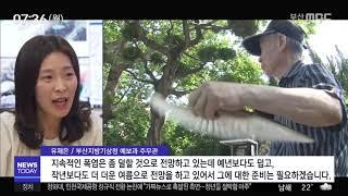 생생인터뷰 - 유재은 부산지방기상청 예보과 주무관, 2…