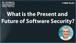 What is the Present and Future of Software Security?