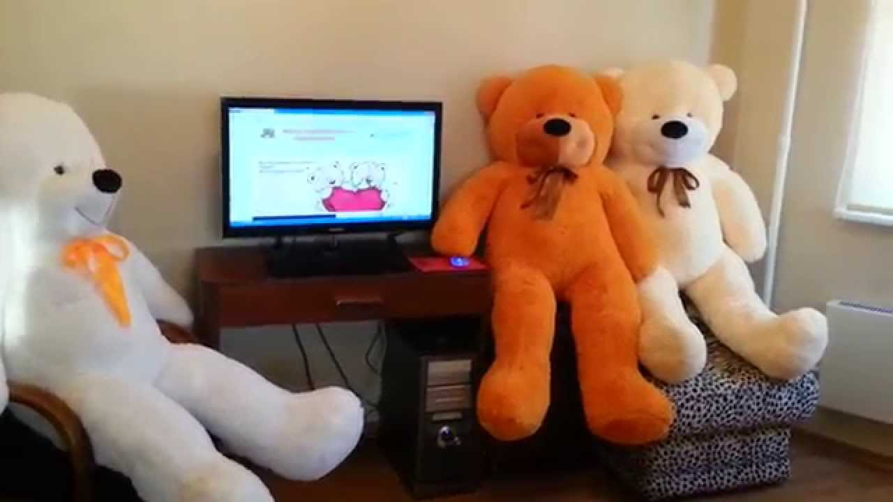 Гигантский мишка БАРНИ - YouTube