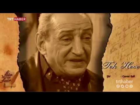 Şair Cemal Safi, 80 yaşında tedavi gördüğü hastanede hayatını kaybetti.