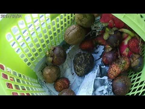 фрукты во вьетнаме фото