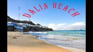 Dalia beach morocco شاطئ الدالية
