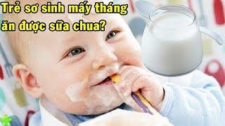 Trẻ sơ sinh mấy tháng thì ăn được sữa chua? Những lưu ý quan trọng khi cho trẻ ăn sữa chua