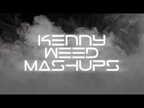Eminem vs. 257ers - Without Me vs. Säbelzahntiger RMX # KENNY WEED MASHUPS