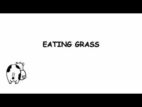 I Am Cow by Arrogant Worms (w/ Lyrics)