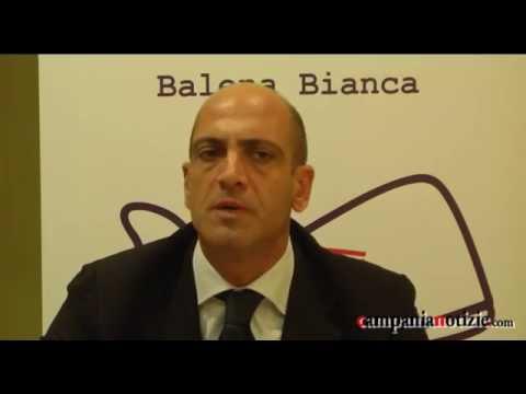 Costituente Balena Bianca, conferenza stampa integrale