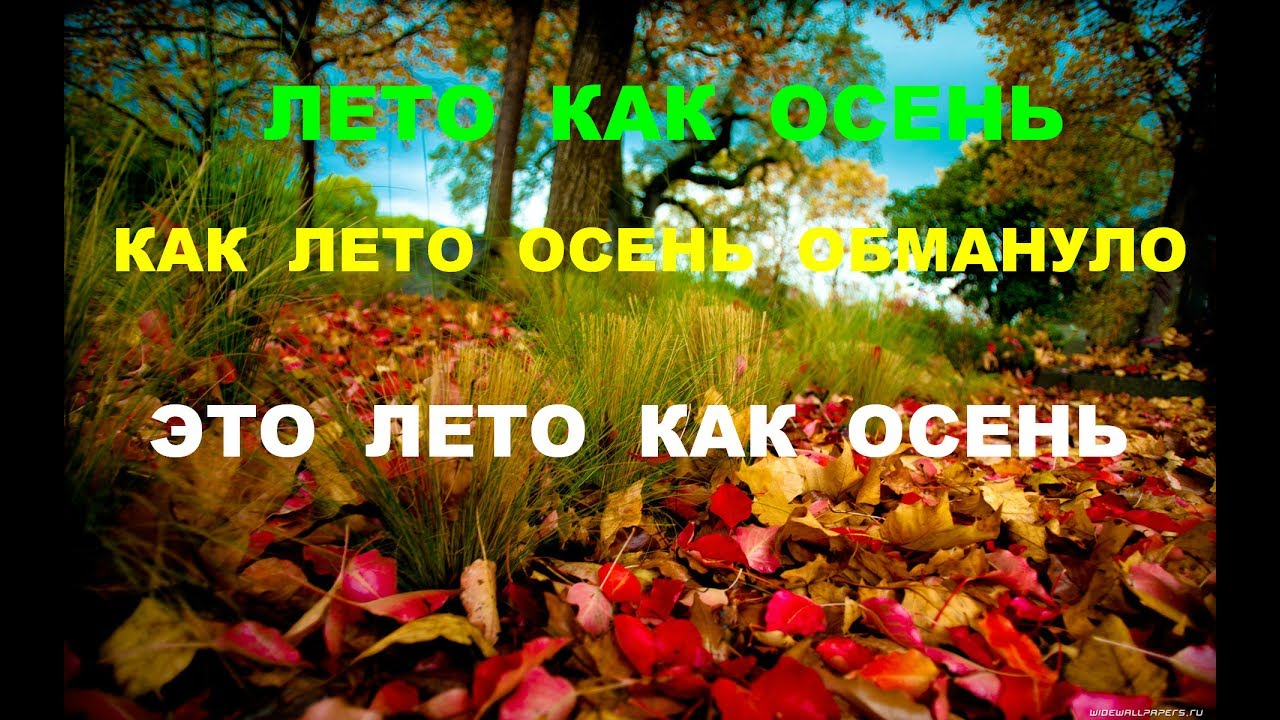 осень и лето фото
