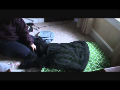 product-review-of-molly-mutt-dog-bed-duvet