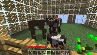 Minecraft [CZ] - Ant Farm Survival - S02E06 - Syčák jeden!