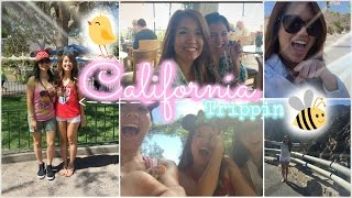 Travel Vlog ✈ California: Let