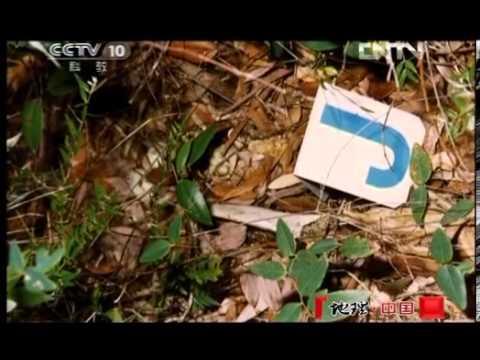 地理中国 《地理中国》 20121015 孤岛魅影
