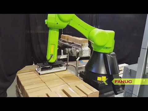 Collaborative Dual Palletizing Cell with FANUC CR-35iA Collaborative Robot - ESS Technologies