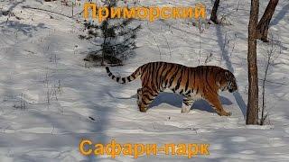 Ролик Приморского Сафари-парка для туристской выставки во Владивостоке