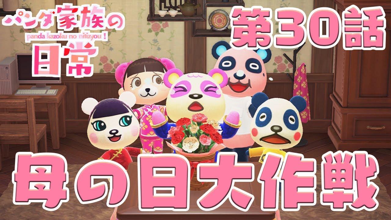 【あつ森アニメ】パンダ家族の日常#30「母の日大作戦」