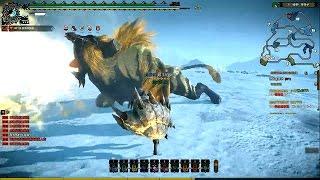 Monster Hunter Online - S Challenge Rajang HR Hammer Move Gameplay