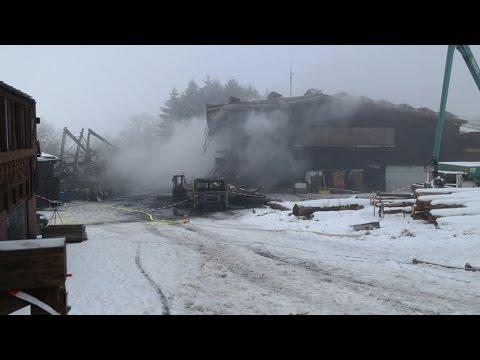 Brand in Sägewerk in Schauenburg-Hoof: Halle vollständig zerstört