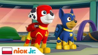 Saving Apollo the Super Pup! | PAW Patrol | Nick Jr.