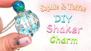 RESIN SHAKER CHARM - Magical bottle- Sophie and Toffee Elves Box- DIY