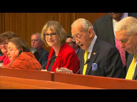Mayor de Blasio Delivers Testimony on New York City Budget