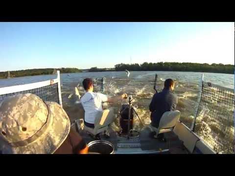 Bowfishing Asian Carp Illinois River Peoria Carp Hunters