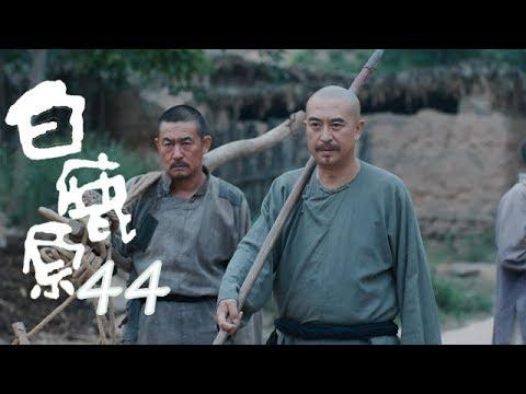 白鹿原 | White Deer 44【DVD版】(張嘉譯、秦海璐、何冰等主演)
