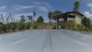 True Flavor Plantation - 360 video