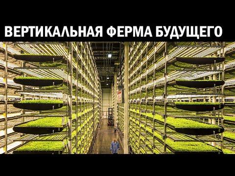 Эта вертикальная ферма