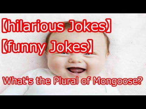 Mongoose plural joke