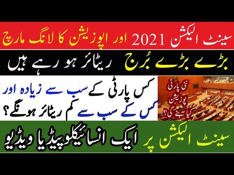 What will be fresh Party Position after Senate Elections March 2021? | ZN News exclusive