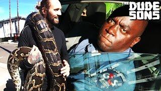 Giant Snake Uber Prank - The Dudesons
