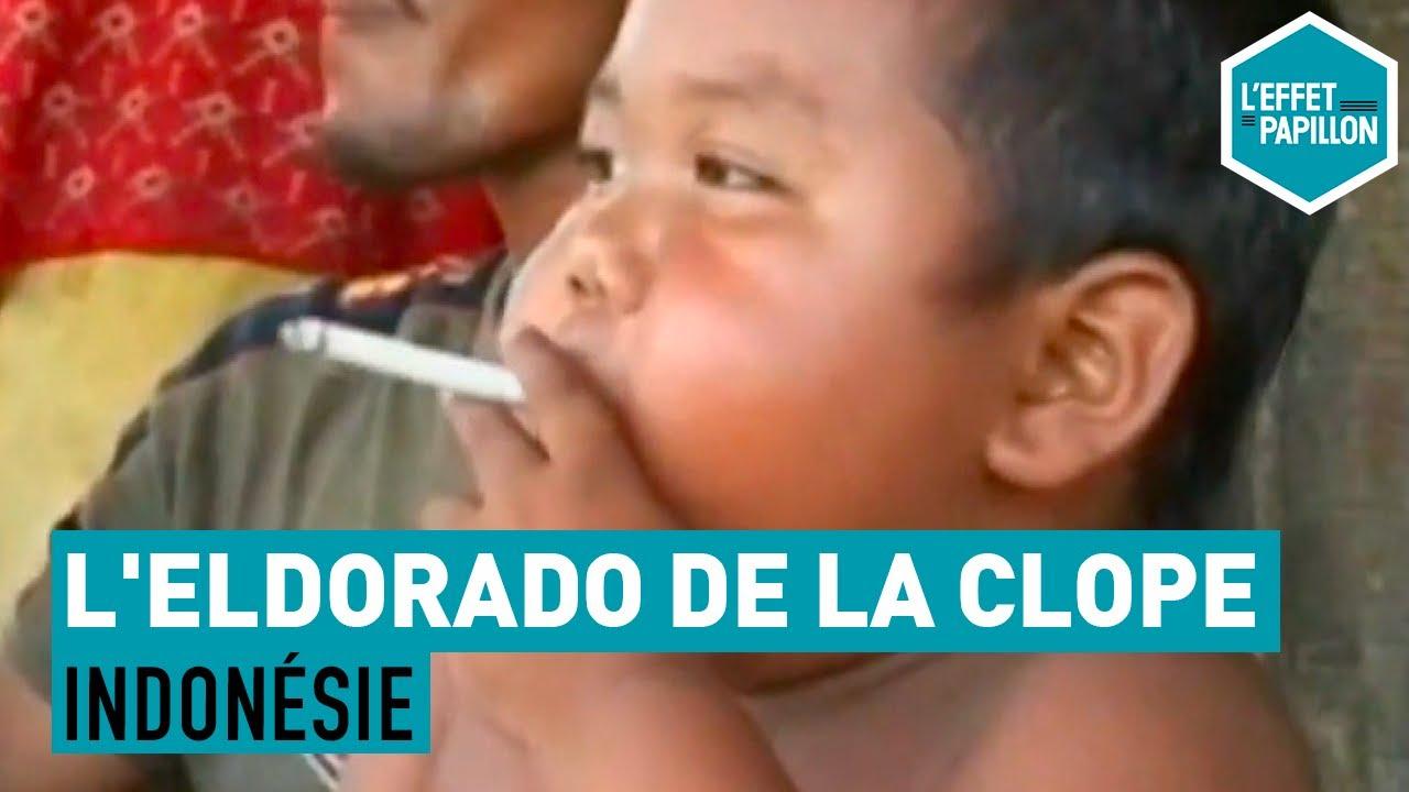 Download Indonésie : L'Eldorado De La Clope - L'Effet Papillon
