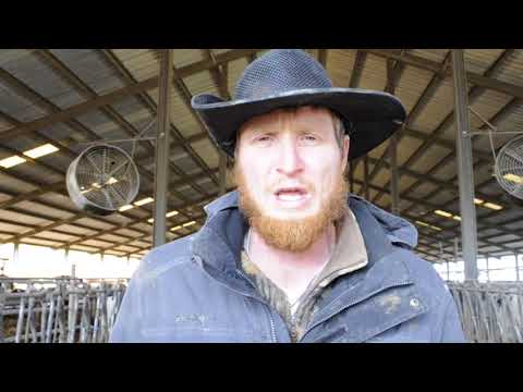 Dairy farmer Caleb Watson talks about his termination from Dean Foods