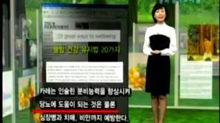 韓國珍島薑黃影片