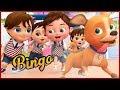 Bingo Classroom Dog Song  ~  Banana Cartoons [HD]