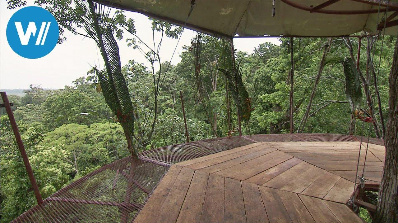 Costa Rica: Das Höchste Baumhaus Der Welt