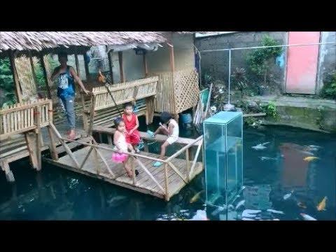 Fish pond storm drain revisit feeding fish iligan city for Koi pond quezon city