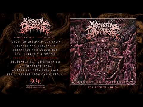 VISCERAL DISGORGE - Spastic Anal Lacerations (Official Track Stream)