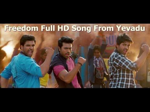 Freedom full HD Song from Yevadu   Ram Charan , Allu Arjun, Sruthi Hasan, etc