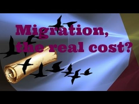 Lords Mobile: Migrating, What Does It Really Cost?
