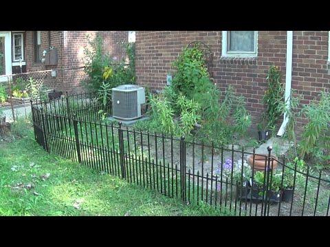 Finishing up the Garden Fence