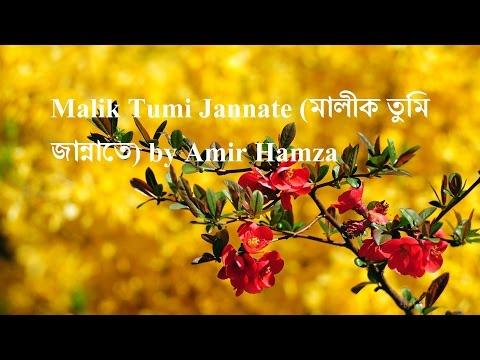 malik-tumi-jannate-(মালীক-তুমি-জান্নাতে)-by-amir-hamza