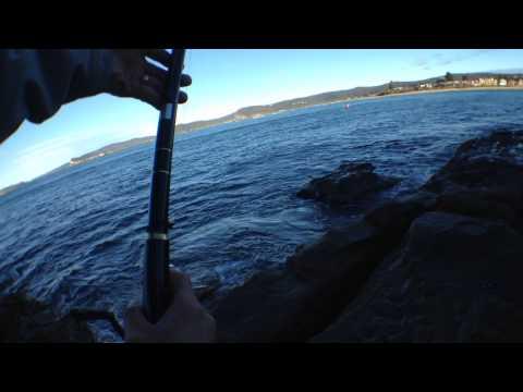 Iso Fishing At Half Tide Rocks (Central Coast)
