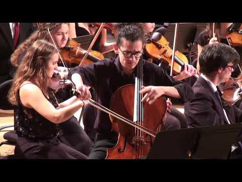 Beethoven Triple Concerto - Adamastor Trio/ESML Symphonic Orchestra