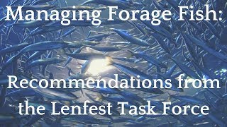 Managing Forage Fish — Recommendations from the Lenfest Task Force