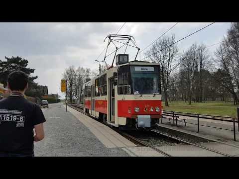Straßenbahn Dresden - T6A2  Fotosonderfahrt 8.April 2018
