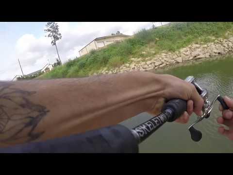 Cypress Creek bass fishing Houston TX