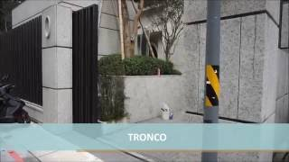 [TRONCO] Automatic Sliding Gate (橫移電動大門)