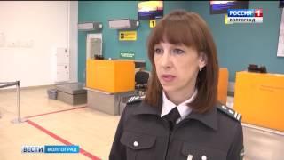 2017 07 20 Волгоград ТРВ В России упростились требования к перевозке животных